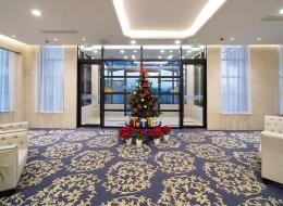 Christmas_Tree_DSC04838-